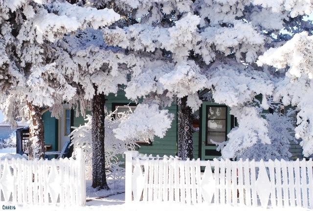 longview frost house crop chDSC_0003