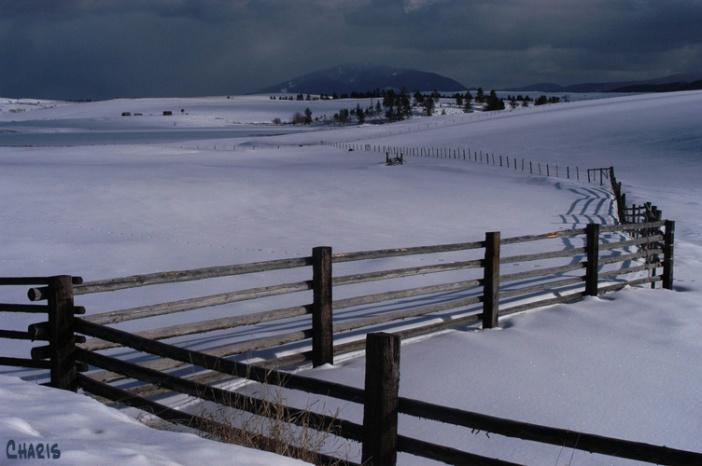 Pighin farm cross fence