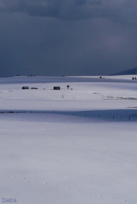 pighin snow farm