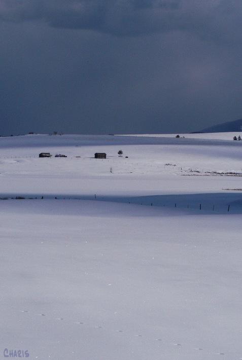 pighin snow farm
