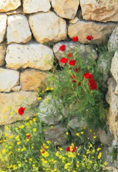 bethesda poppies