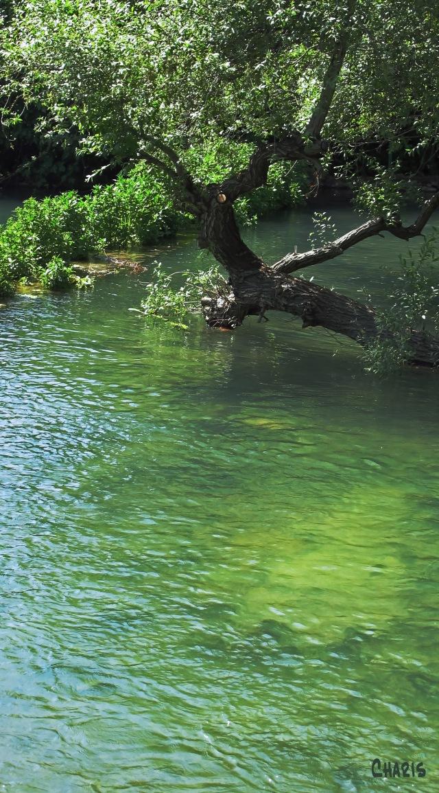 Mt. Hermon Springs