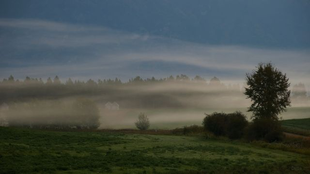 IMG_2009 granaries in mist