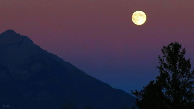 IMG_0465 steeples moon ch