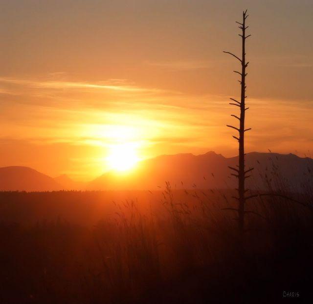 sunset from wildhorse