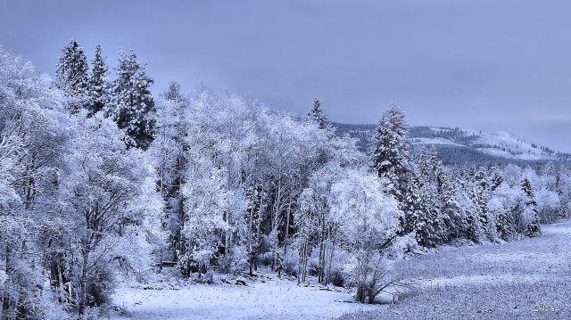 IMG_5567 jaffrey snow