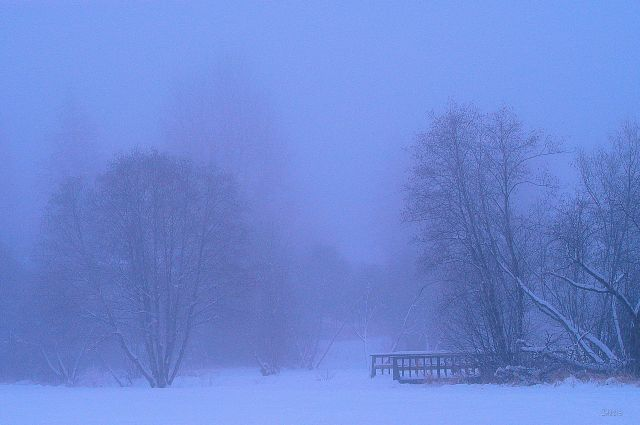 DSC_0180 kin park snow