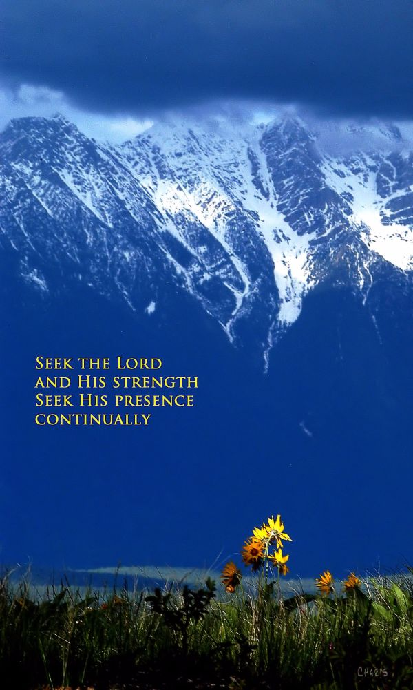 seek the Lord and his strength2 ch DSC_0818