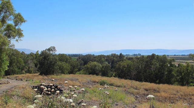 IMG_8347 Galilee view from Bethsaida