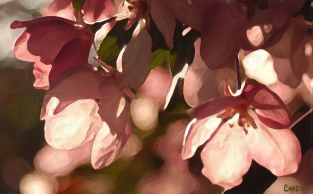 plum blossoms gouache