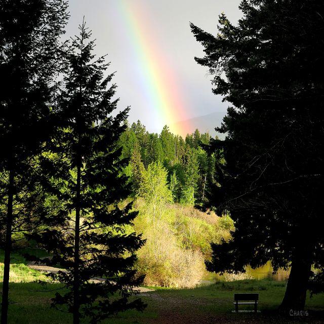 rainbow idlewild IMG_9974 ch