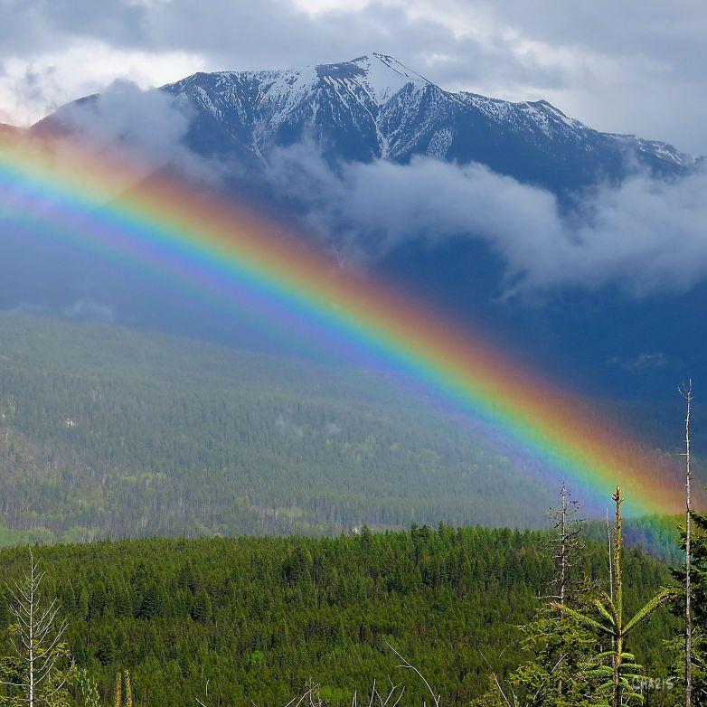 rainbow square IMG_9852 ch