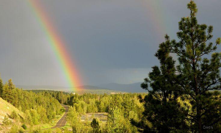 rainbow wildhorse IMG_9948 ch