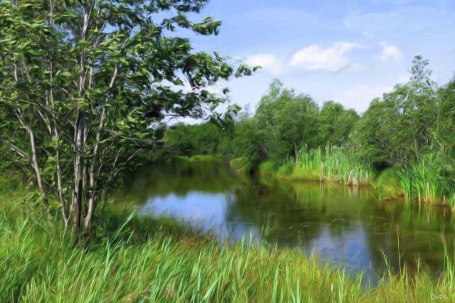 bow pond gouache ch