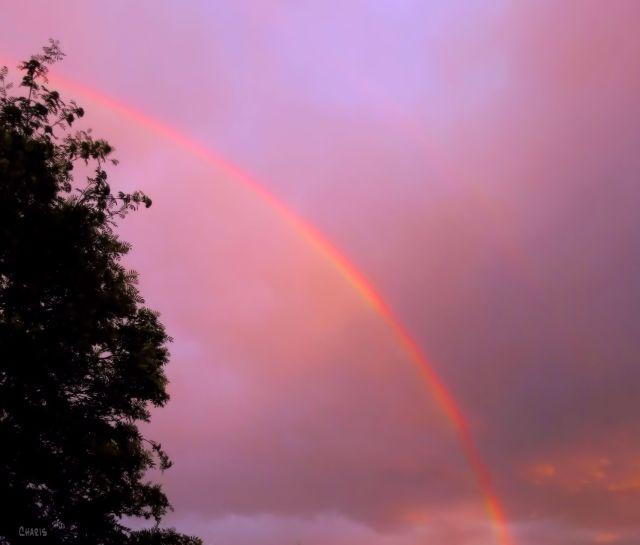 IMG_1690 rainbow ch