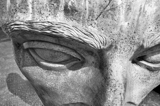 IMG_2253 statue face brow worry bw ch