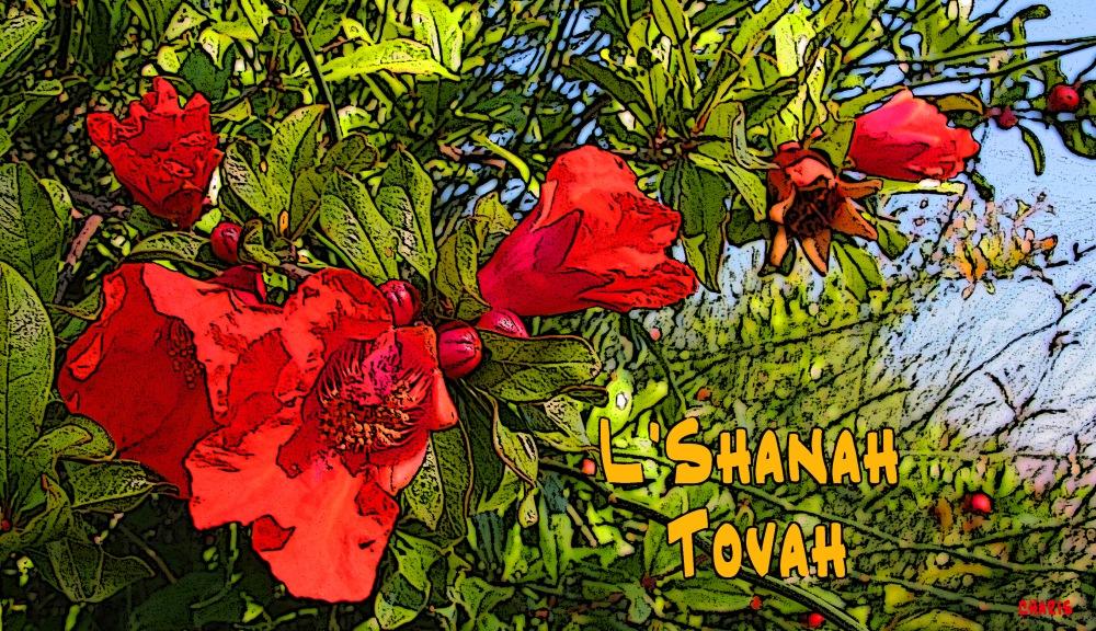 IMG_8485 pomegranate flowers l'shanah tova_edited-1