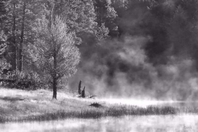 morning fog ft steele pond bw IMG_4863