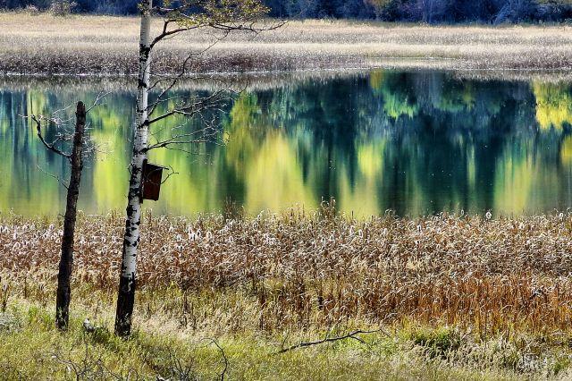 IMG_6032 upper mayook pond autumn ch