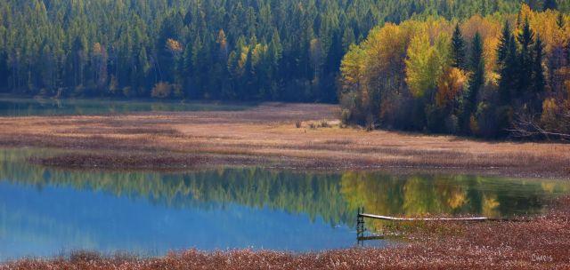IMG_6064 mayook pond autumn reflect dock lake ch