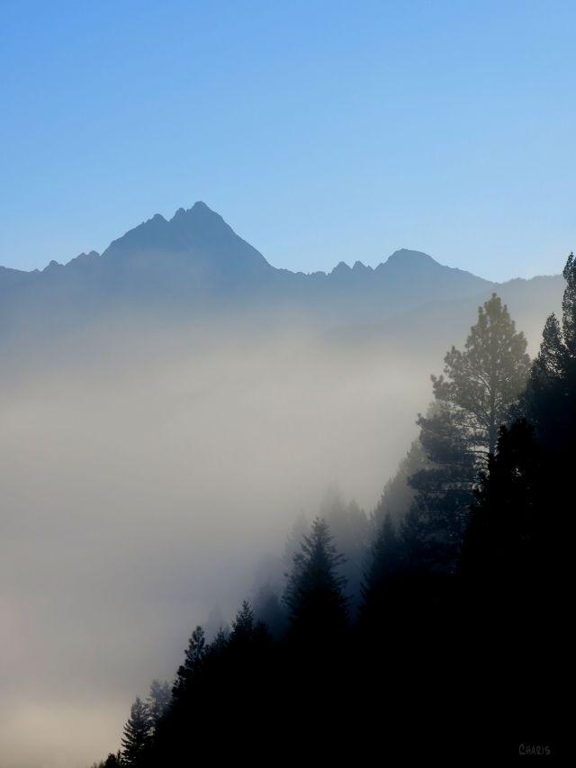 IMG_6586 Mt. fisher fog hwy