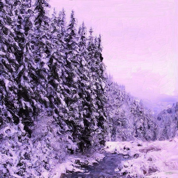 Michel Creek winter ch