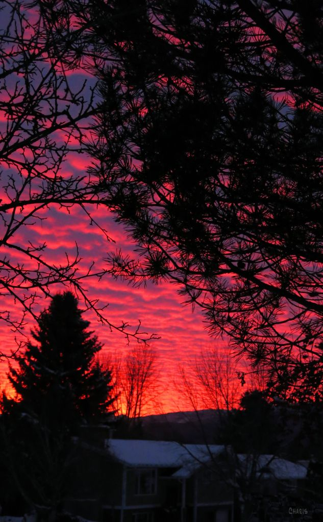 winter sunset IMG_0183 ch