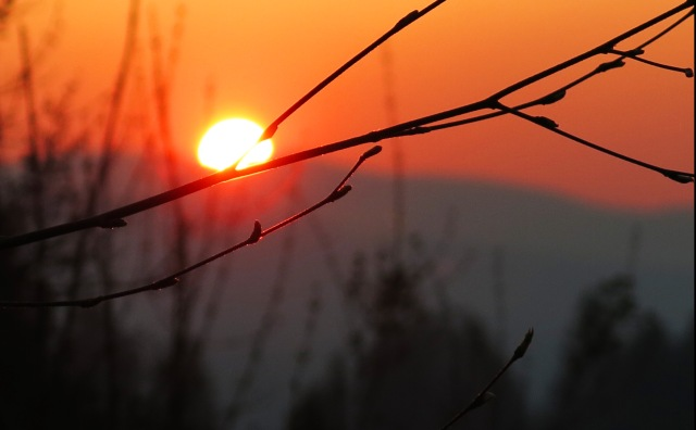 IMG_2421 sunset smokey evening
