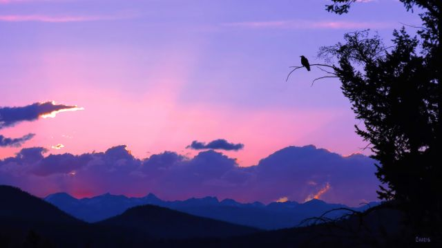 IMG_3473 sunset june 11 4