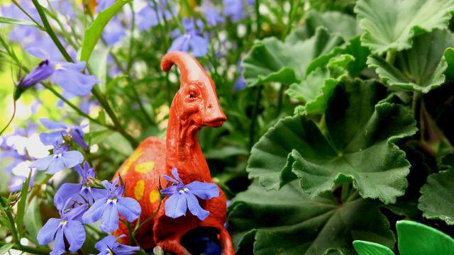 dinosaur orange garden IMG_4077