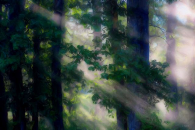 forest rays painting ch 2