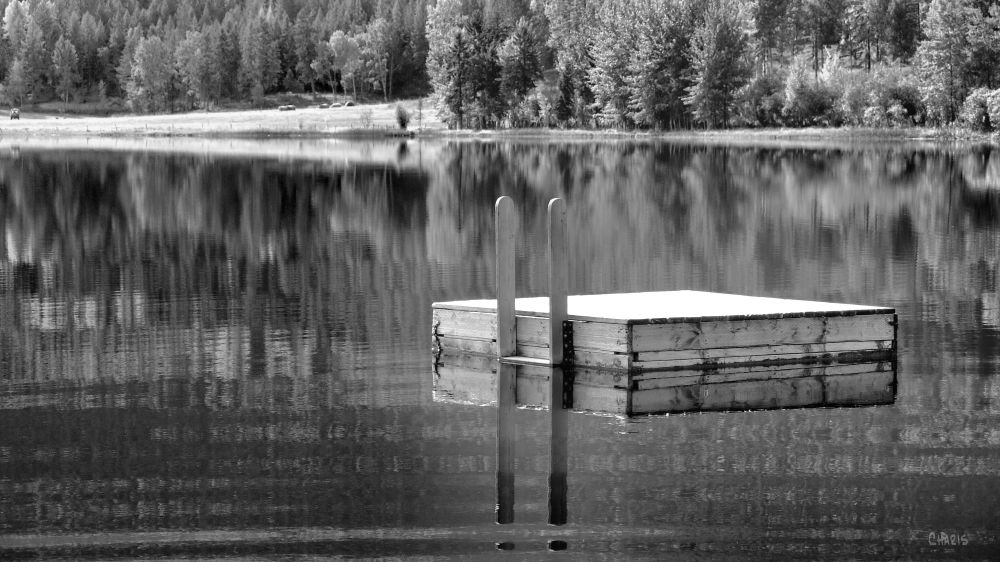 IMG_6123 mayook dock pond reflect bw ch