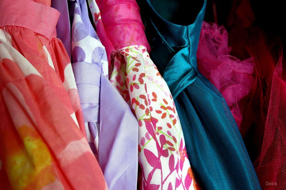 IMG_2038 dresses fabric closet ch