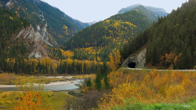 Elk River flyfishing autumn ch mountain tunnel IMG_6565