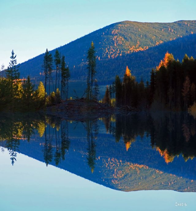 Larch mountain reflect IMG_7943