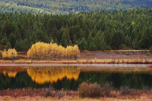 Mayook pond autum dark water reflect 2 chDSC_0035