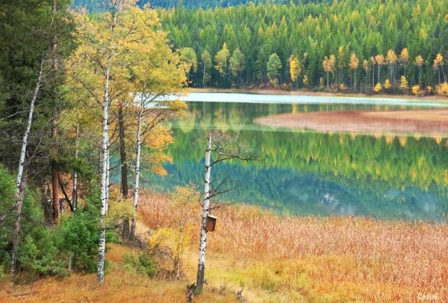 Mayook pond autumn ch