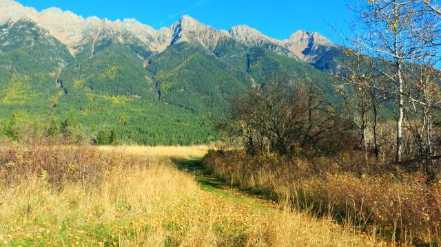 norbury mountains path autumn IMG_7537