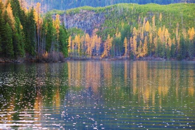 Munro Lake rain ch IMG_8359