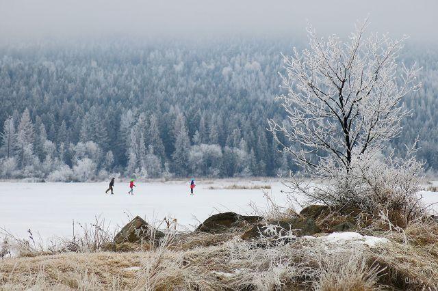 Elizabeth Lake skaters IMG_6905