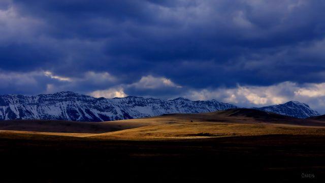 cowboy trail sunliy field IMG_0978