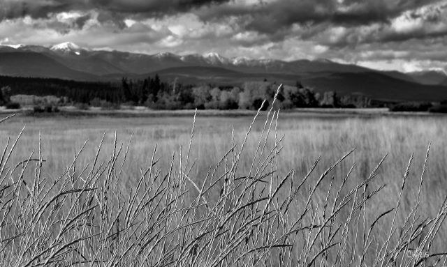 Bummers Flats bw ch mountains fields IMG_3715 - Copy