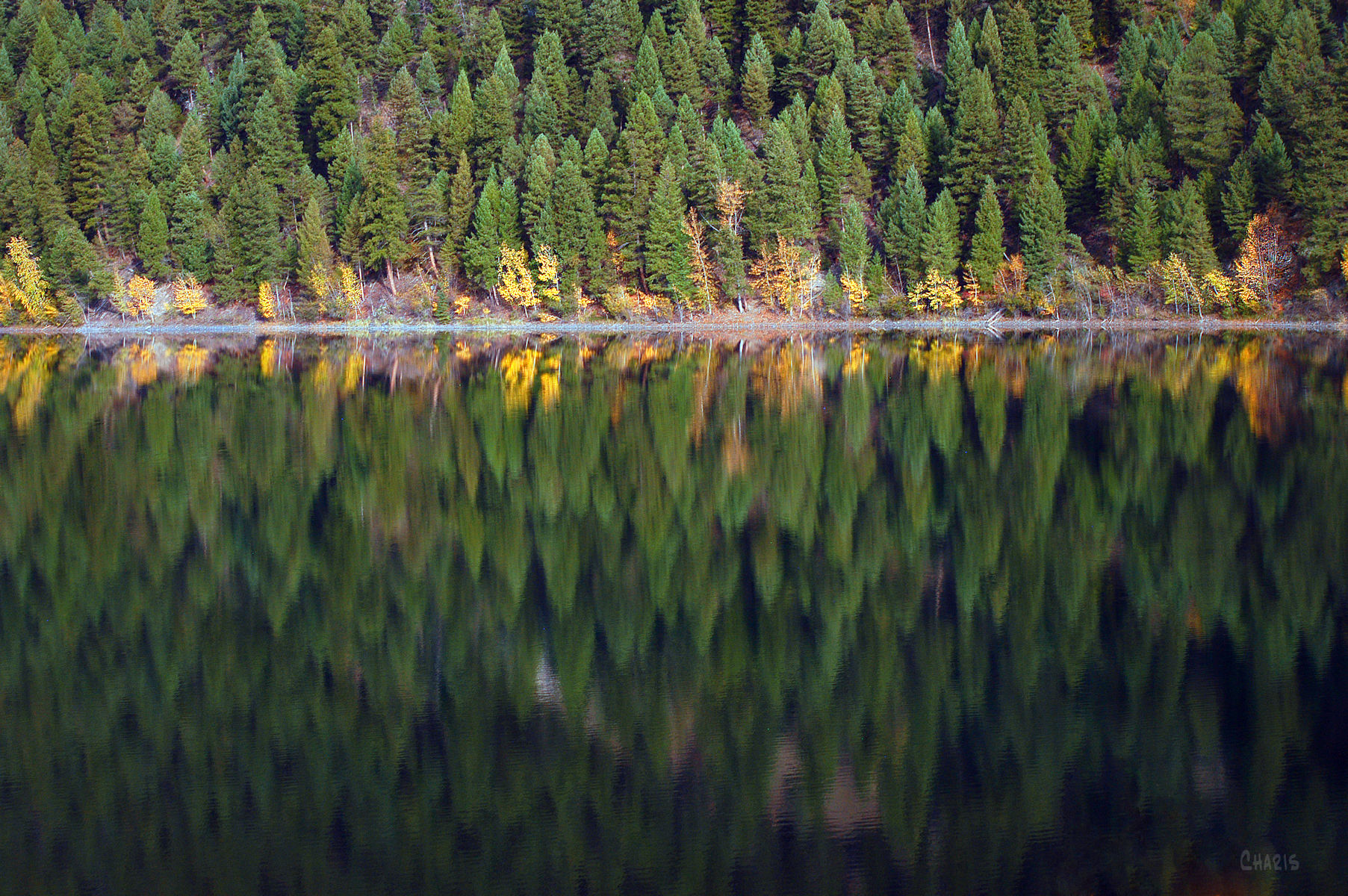 lazy-lake-reflection-evergreens-ch-rs-dsc_0182