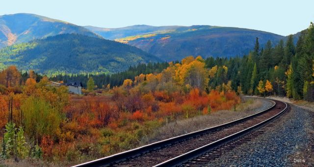 train-tracks-autumn-ch-crop-img_4265_edited-1