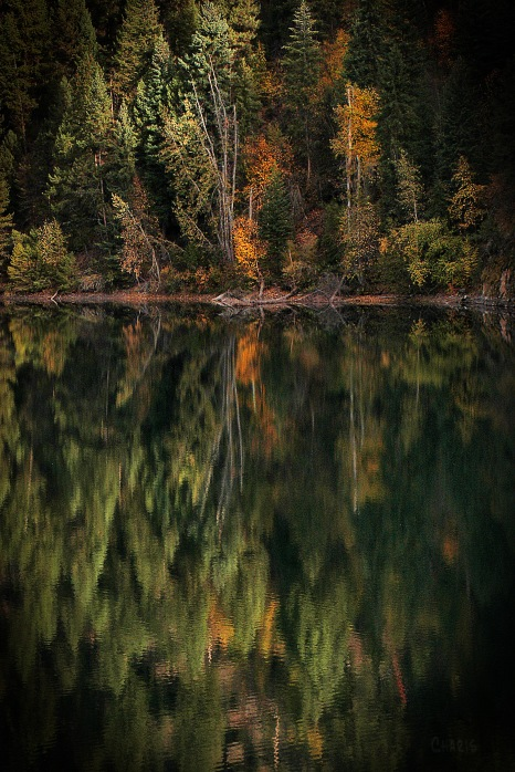 autumn-lazy-lake-green-reflect-dsc_0190