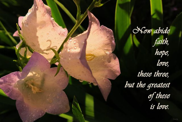faith-hope-love-ch-img_2600_edited-1