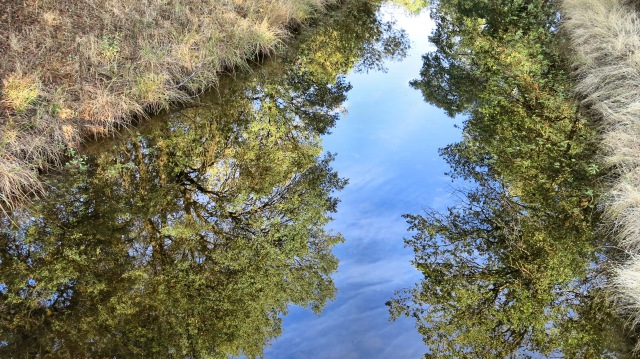 redding-rv-reflection-ditch-img_4889