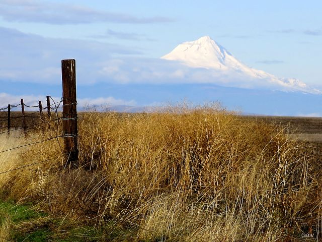 volcano-oregon-autumn-img_5246