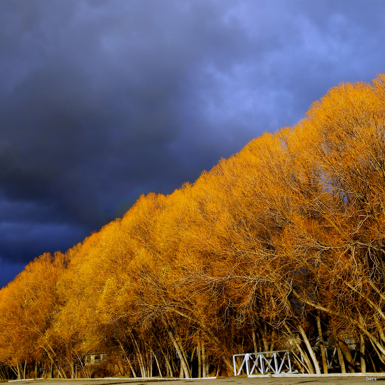 willowa-autumn-mall-ch-dark-sky-img_5660
