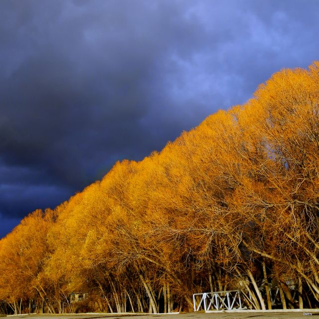willowa-autumn-mall-ch-dark-sky-img_5660